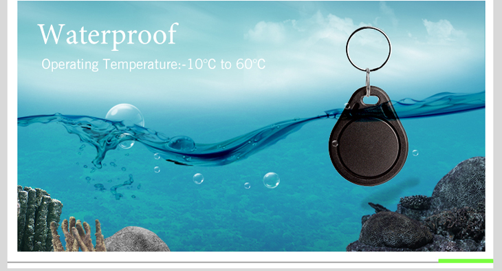 Waterproof RFID Key Fob With EM4200 Chip